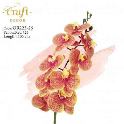 9 Heads Latex Butterfly Orchid