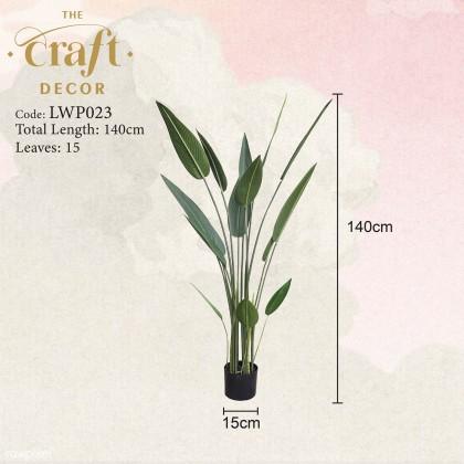 Premium Skybird / Monstera / Traveller Palm / Fiddle Leaf Fig Plant With Pot